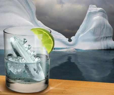Gin and Titonic Ice Cube Mold